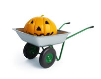 Wheelbarrow halloween pumpkins Royalty Free Stock Photo