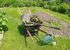 Wheelbarrow In Herbaceous Garden Stock Photography