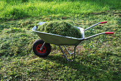 Wheelbarrow on a lawn with fresh grass Royalty Free Stock Photo