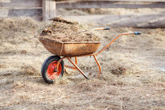 Wheelbarrow with manure and hay in the middle of the paddock royalty free stock photography