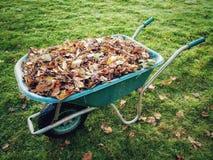 Wheelbarrow pełno jesień liście fotografia stock