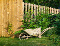 Wheelbarrow Planter Stock Photo