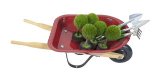 Wheelbarrow with Plants and Tools Royalty Free Stock Images