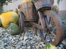 Wheelbarrow and pumpkins in the garden. Halloween mood in the autumn garden Stock Photo