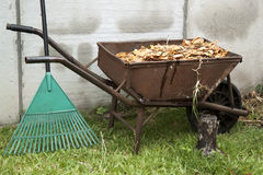 Wheelbarrow and rake Stock Photo