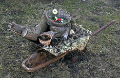 Wheelbarrow with rubbish. Wheelbarrow with household rubbish, weeds and firewood Royalty Free Stock Images