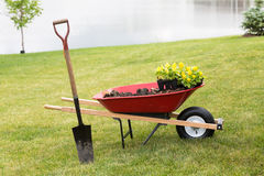 Wheelbarrow with seedlings and a spade Royalty Free Stock Images