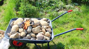 Wheelbarrow with stones. Gloves and scissors for working in the garden Stock Photo