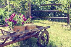 Wheelbarrow wooden decoration with flowers in a garden Royalty Free Stock Photo