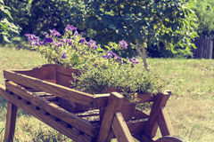 Wheelbarrow wooden decoration with flowers in a garden Royalty Free Stock Photos