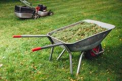 Wheelbarrow z trawą i lawnmower na zielonym gazonie Obraz Stock