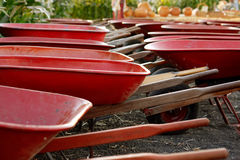 Wheelbarrows Stock Photo