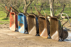 Wheelbarrows Stock Photos