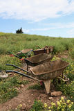 Wheelbarrows Royalty Free Stock Photo