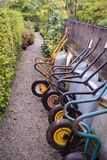 Wheelbarrows in a row in Irish garden royalty free stock images