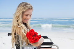 Wheelchair bound blonde smiling on the beach holding roses Royalty Free Stock Photo
