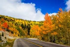 Wheeler Peak Scenic Drive Fotografía de archivo