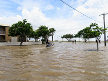 Wheelie в затопленной улице Стоковое Изображение RF