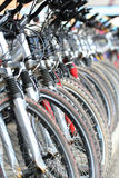 Wheels. Rows of bicycles at a rental shop Stock Photography