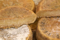 Wheels of aged cheese for sale Stock Image