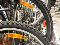 Wheels of a bicycle. Two wheels of a bicycle Stock Photos