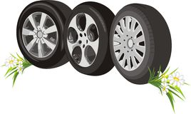 Wheels of cars with chamomiles Stock Photography