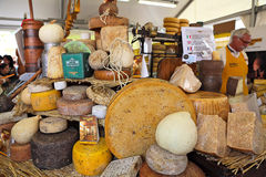Wheels of mature cheese on the stand. Stock Image