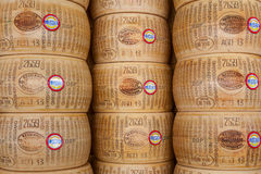 Wheels of Parmesan chees in Italy. Stock Photography