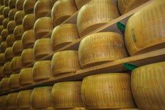 Wheels of parmesan cheese at dairy Royalty Free Stock Image