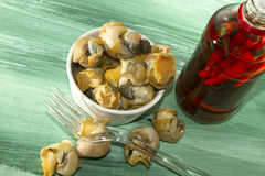 Whelk Feast Stock Photos