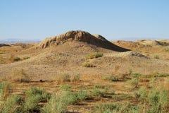 Whell asciutto al suolo del deserto Fotografia Stock