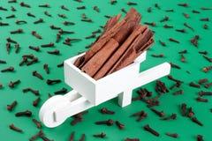 Whellbarrow with cinnamons Stock Image