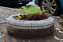 Free When Life Gives You Tires, Make Gardens Stock Images - 163103414