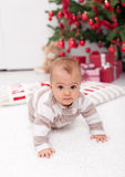 Where is the christmas tree mom ? Stock Image