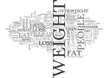 Where Diets Go Wrong Word Cloud Royalty Free Stock Photo