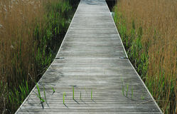 Where does it lead?. Wooden path over lake stock images