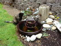Where have all the fish gone?. Cat looking for goldfish in small pond made from old porcelain insulator, copper pipe and driftwood Stock Photos