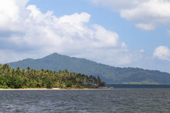 Where the Jungle meets the Sea Stock Photo