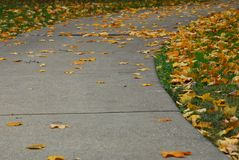 Where the Sidewalk Ends. A curved sidewalk with fall leaves all around stock images