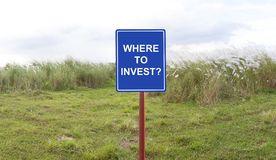 Where to invest signage  concept. Where to invest signage on a Flower blooning of Eulalia grass- somewhere field in Manila Philippines Stock Photography