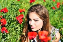 Where the wild poppys grow Stock Photography