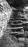 Where will these take me?. Black and white steps leading from beach. Fodele. Crete. Greece Royalty Free Stock Photography