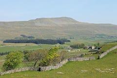 Whernside, tre picchi, Yorkshire del nord Inghilterra Immagini Stock