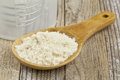 Whey protein concentrate powder Stock Photography