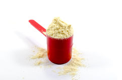 Whey Protein Stock Photography