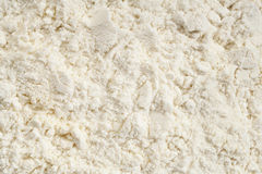 Whey protein powder Royalty Free Stock Photography