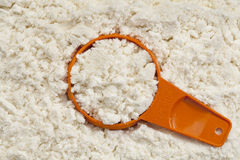 Whey protein powder scoop Royalty Free Stock Photo