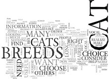 Which Of These Cat Breeds Is The Right One For You Word Cloud. WHICH OF THESE CAT BREEDS IS THE RIGHT ONE FOR YOU TEXT WORD CLOUD CONCEPT Stock Image