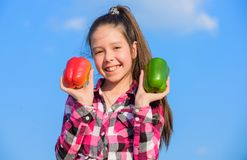 Which pepper would you pick. Kid girl hold red and green peppers sky background. Child presenting kinds of pepper. Kid. Hold ripe pepper harvest. Fall harvest royalty free stock image