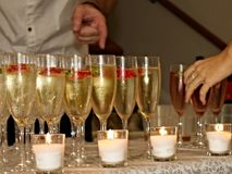 Which wine glass is for me? Royalty Free Stock Photography